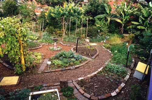 permaculture-garden-design